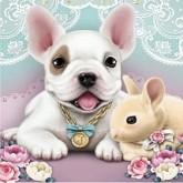 Hund och kanin, fyrkant, 20x20cm
