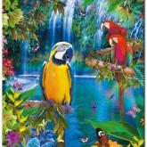 Papegojjor, fyrkant 55x75cm
