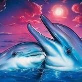 Delfiner, fyrkant, 40x30cm