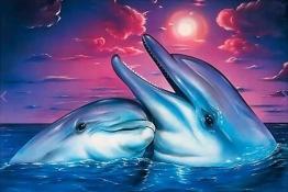 Delfiner, fyrkant, 40x30cm - Delfiner, fyrkant, 40x30cm