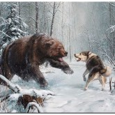 Skogens djur, fyrkant 50x60cm
