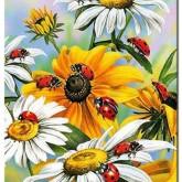 Leveranstid 1,5v - Nyckelpigor i blomning, fyrkant 30x40cm
