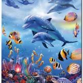 Leveranstid 1,5v - Delfin lek, fyrkant 50x60cm