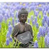 Buddha soulsearch, rund 60x50cm