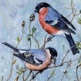 Leveranstid 1,5v. Fåglar, fyrkant, 50x50cm