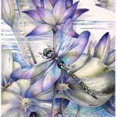 Trollsländan lila, fyrkant, 50x70cm
