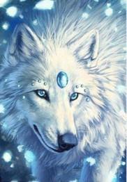 Vinter varg, fyrkant, 50x70cm - Vinter varg, 50x70cm fyrkantig pärla