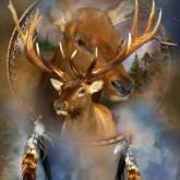 Drömfångare renar, fyrkantig, 60x80cm