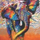 Elefant färgglad, fyrkant, 60x80cm