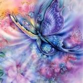 Fjäril färgglad, fyrkant, 50x60cm
