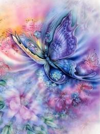 Fjäril färgglad, fyrkant, 50x60cm - Fjäril färgglad, fyrkant, 50x60cm