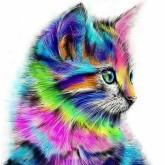 Färgglad katt, fyrkant, 20x20cm