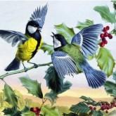 Fåglar, rund, 60x40cm