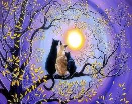 Katter i solnedgång, fyrkant, 50x40cm - Katter i solnedgång, fyrkant, 50x40cm