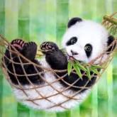 Panda, fyrkant 30x25cm
