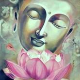 Buddha lotus, fyrkant 40x50cm