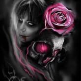 Lila rosen, fyrkant 40x50cm