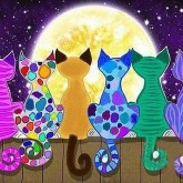 Färgglada katter, fyrkant 70x50cm