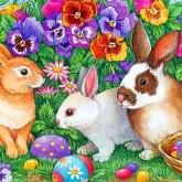 Kaniner, fyrkant 70x50cm