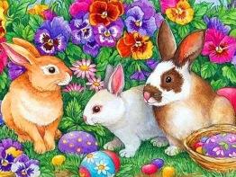 Kaniner, fyrkant 70x50cm - Kaniner, fyrkant 70x50cm
