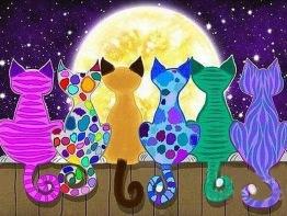Leveranstid 1,5-2v - Färgglada katter, fyrkant 70x50cm - Färgglada katter, fyrkant 70x50cm