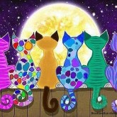 Färgglada katter, rund 70x50cm