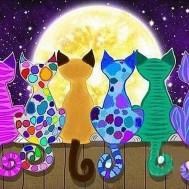 Leveranstid 1,5-2v - Färgglada katter, fyrkant 70x50cm