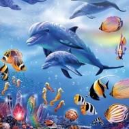 Delfiner, fyrkant 40x50cm