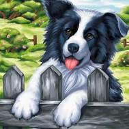 Hund staket, fyrkant 20x20cm