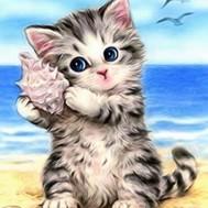 Katt med snäcka, fyrkant 20x25cm