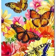 Leveranstid 1,5v - Fjärilar, fyrkant 30x40cm