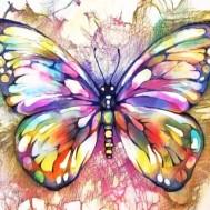 Leveranstid 1,5v - Fjäril färgglad, fyrkant, 30x30cm