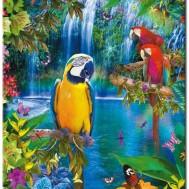 Leveranstid 1,5v - Papegojjor, fyrkant 55x75cm