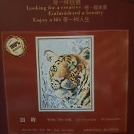 Tiger ansikte 20 cm x 28 cm PART
