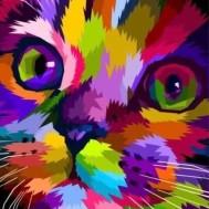 Färgglad katt, fyrkant 50x60cm