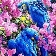 Fåglar i blom, fyrkantig 60x80cm