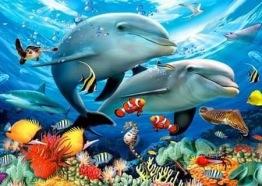1,5-2v leveranstid - Delfin par - 30x40cm