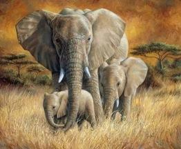 1,5-2v leveranstid - Elefant familj - 40x30cm