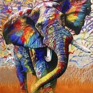 Indisk elefant, fyrkantig 60x80cm