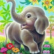 Elefant unge, fyrkantig 40x50cm