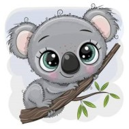 Koala, fyrkantig 30x30cm