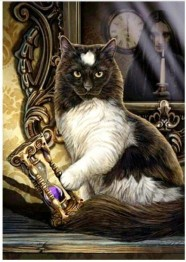 Katt timglas, fyrkantig 50x70cm -