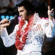 Elvis på scen, fyrkantig 50x70cm
