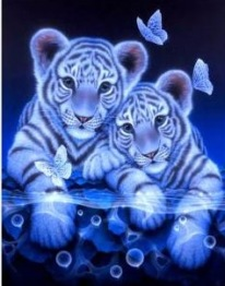 Leveranstid 1,5-2v, Diamondpainting, diamant tavla Tiger bebisar fjäril, fyrkantiga 30x40cm -