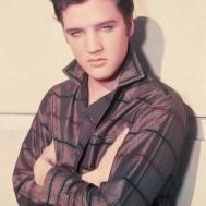 Leveranstid 1,5v - Elvis, fyrkant, 50x70cm