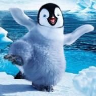 Leveranstid 1,5-2v - Pingvin, fyrkant 40x40cm