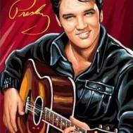 Leveranstid 1,5-2v, Diamondpainting, diamant tavla Elvis skinnjacka gitarr