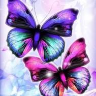 Leveranstid 1,5-2v, Fjärilar 40x50cm