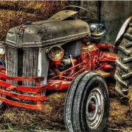 Traktor röd, fyrkantig eller rund 50x40cm
