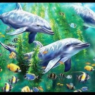 Leveranstid 1,5-2v, Diamondpainting, diamant tavla Delfiner grön
